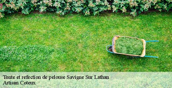 Tonte et refection de pelouse  savigne-sur-lathan-37340